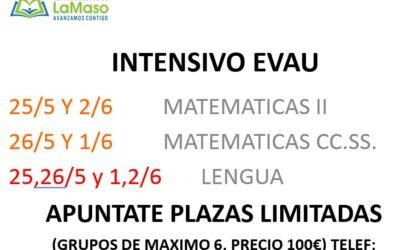 INTENSIVO Selectiviadad / EvAU